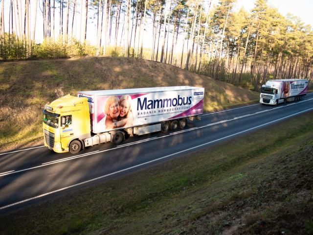 Mammobusy w drodze